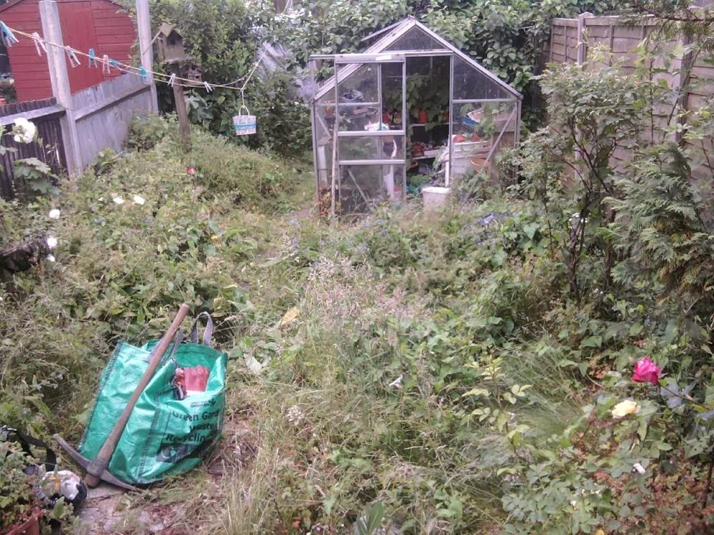 all in one home and garden maintenance