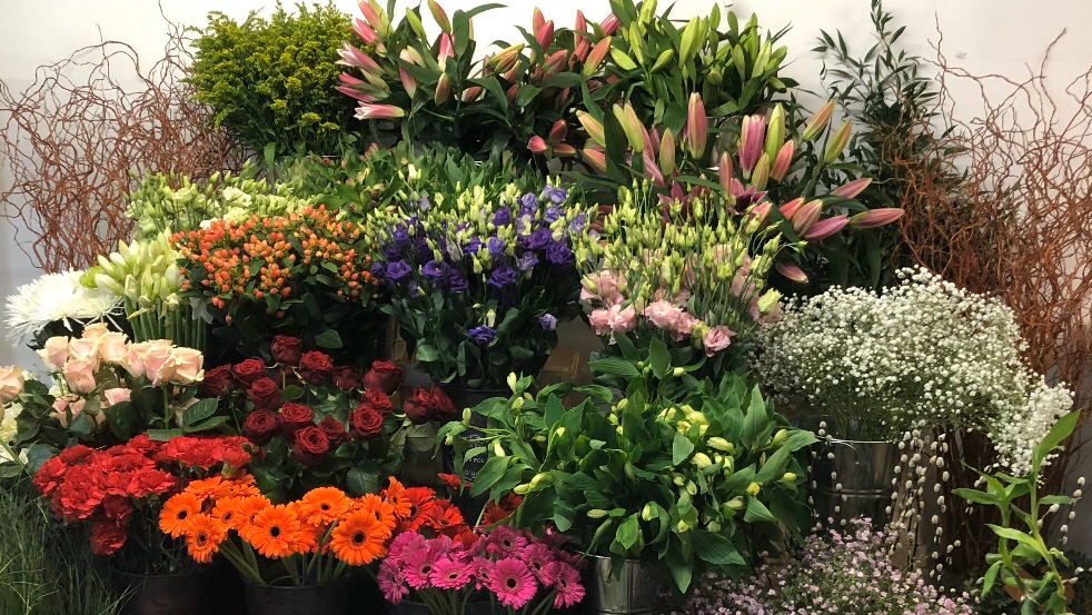 High House Florist & Garden Centre