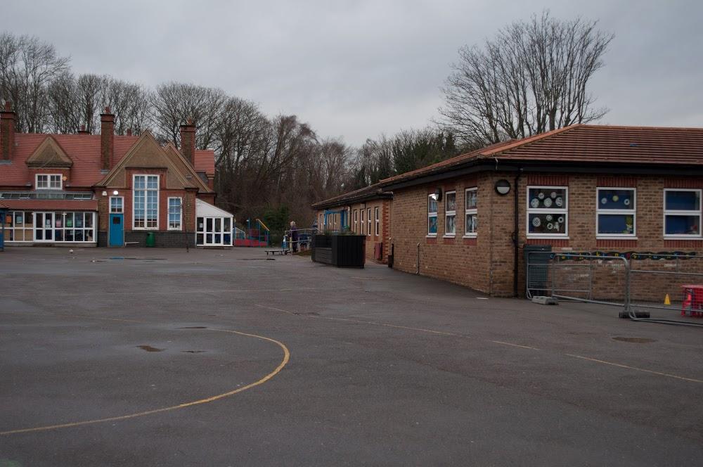 Rosendale Primary School